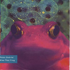 Peter Gabriel - Kiss That Frog CD (album) cover
