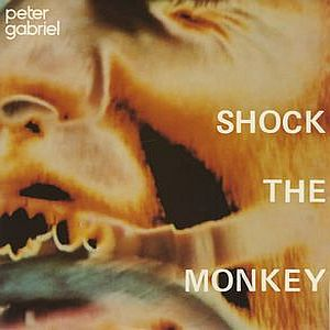Peter Gabriel - Shock The Monkey CD (album) cover