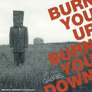 Peter Gabriel - Burn You Up, Burn You Down CD (album) cover