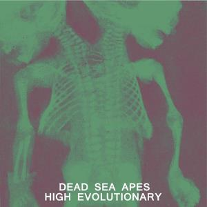 Dead Sea Apes - High Evolutionary CD (album) cover