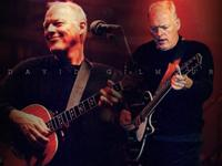 DAVID GILMOUR image groupe band picture