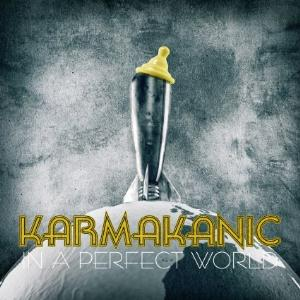 Karmakanic - In A Perfect World CD (album) cover