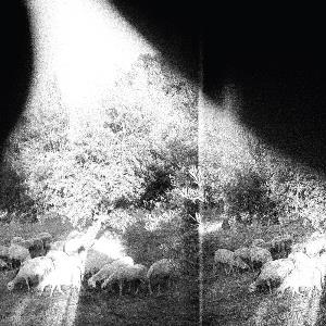 Godspeed You! Black Emperor - Asunder, Sweet And Other Distress CD (album) cover