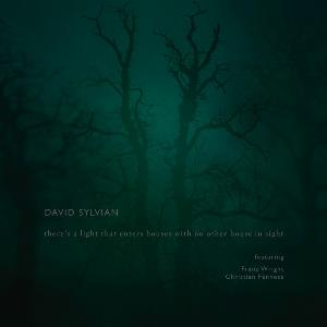 David Sylvian - There's A Light That Enters Houses With No Other House In Sight CD (album) cover