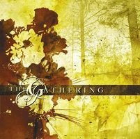 The Gathering - Accessories CD (album) cover