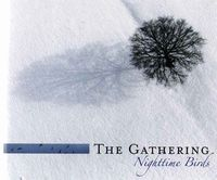 The Gathering - Nighttime Birds (limited Deluxe Edition) CD (album) cover
