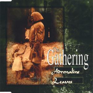 THE GATHERING - Adrenaline / Leaves CD album cover