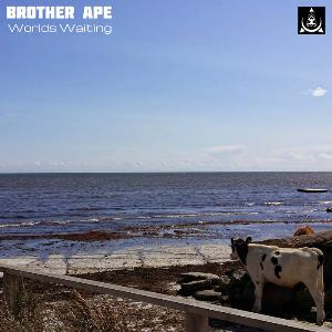 Brother Ape - Worlds Waiting CD (album) cover