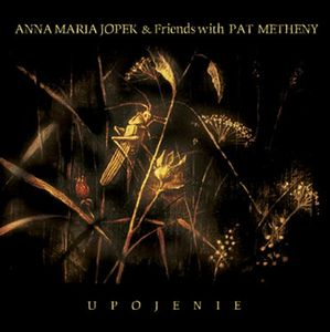 Pat Metheny - Upojenie (pat Metheny & Anna Maria Jopek) CD (album) cover