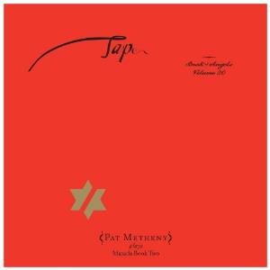 Pat Metheny - Tap: Book Of Angels Volume 20 CD (album) cover
