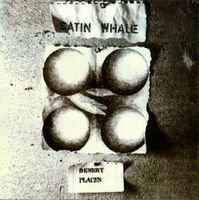 SATIN WHALE - Desert Place CD album cover