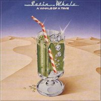 Satin Whale - A Whale Of A Time CD (album) cover