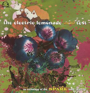 Various Artists (concept Albums & Themed Compilations) - The Electric Lemonade Acid Test - Volume 3 CD (album) cover