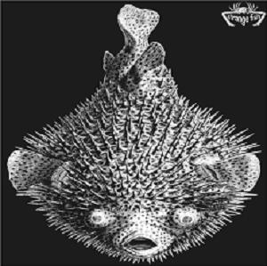 Various Artists (concept Albums & Themed Compilations) - Strange Fish Five CD (album) cover