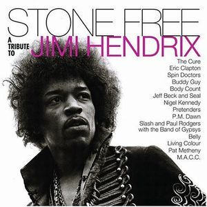 Various Artists (tributes) - Stone Free: A Tribute To Jimi Hendrix CD (album) cover