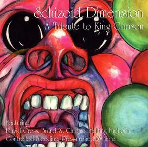 Various Artists (tributes) - Schizoid Dimension - A Tribute To King Crimson CD (album) cover