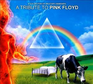 Various Artists (tributes) - A Collection Of Delicate Diamonds - A Tribute To Pink Floyd CD (album) cover