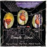 Chris Cutler - Domestic Stories (with Lutz Glandien) CD (album) cover
