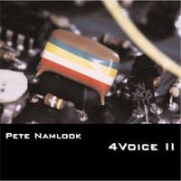 Pete Namlook - 4 Voice II CD (album) cover