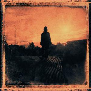 STEVEN WILSON - Grace For Drowning CD album cover