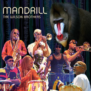 MANDRILL image groupe band picture
