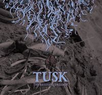 Tusk - The Resisting Dreamer CD (album) cover