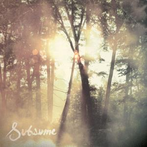 Cloudkicker - Subsume CD (album) cover