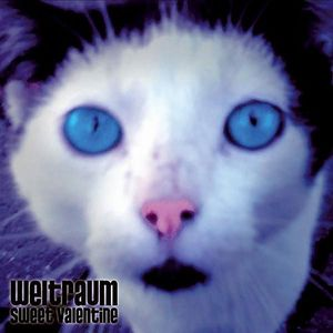 Weltraum - Sweet Valentine CD (album) cover