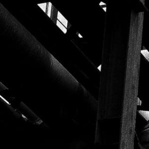 Mouse On The Keys - Machinic Phylum CD (album) cover