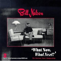 Bill Nelson - What Now What Next CD (album) cover