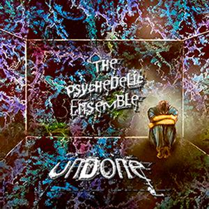 The Psychedelic Ensemble - Undone CD (album) cover