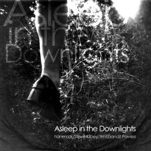 Hammock - Asleep In The Downlights CD (album) cover