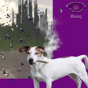 Phrozenlight - Missing CD (album) cover
