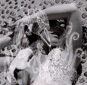 BjÖrk - Vespertine CD (album) cover