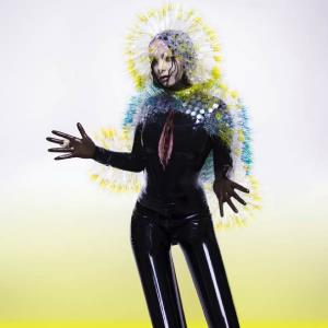 BjÖrk - Vulnicura CD (album) cover