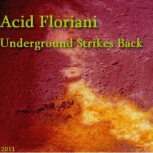 Acid Floriani - Underground Strikes Back CD (album) cover