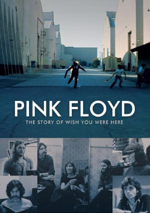 Pink Floyd - The Story Of Wish You Were Here DVD (album) cover