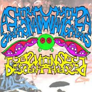 ASHTRAY NAVIGATIONS - Insect Descent CD album cover