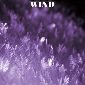 Wind - Wind And Friends CD (album) cover