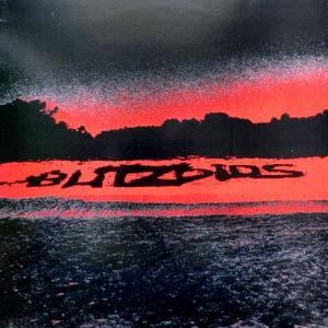 The Blitzoids - Stealing From Helpless Children CD (album) cover