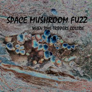 SPACE MUSHROOM FUZZ - When Time Trippers Collide CD album cover