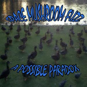 SPACE MUSHROOM FUZZ - A Possible Paradox CD album cover