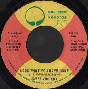 James Vincent - Look What You Have Done CD (album) cover