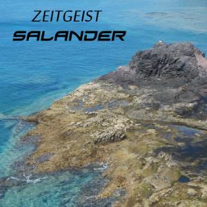 Salander - Zeitgeist CD (album) cover