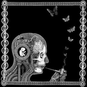 Soen - Cognitive CD (album) cover