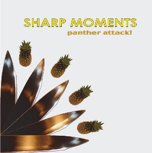 Panther Attack - Sharp Moments CD (album) cover