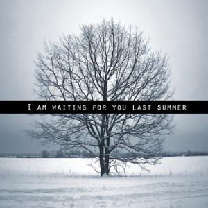 I Am Waiting For You Last Summer - I Am Waiting For You Last Summer CD (album) cover