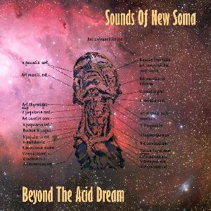 Sounds Of New Soma - Beyond The Acid Dream CD (album) cover