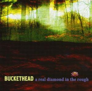 Buckethead - A Real Diamond In The Rough CD (album) cover