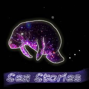 Ben Levin Group - Sea Stories CD (album) cover